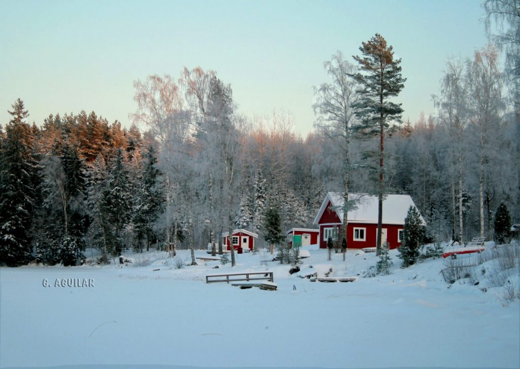Expatriation Sweden : swedish life starts now