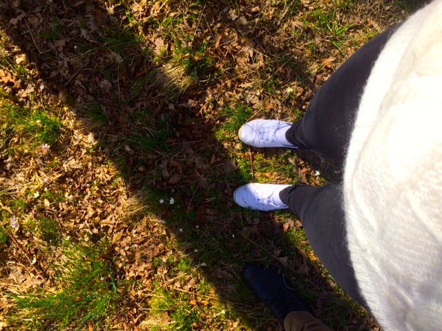 frennarp-forest-feet-nature