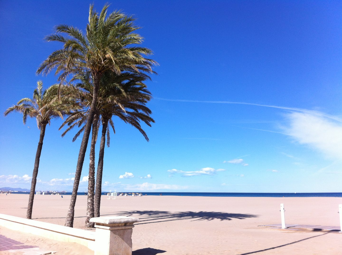 What to do in Valencia in Spain, the city of sun?