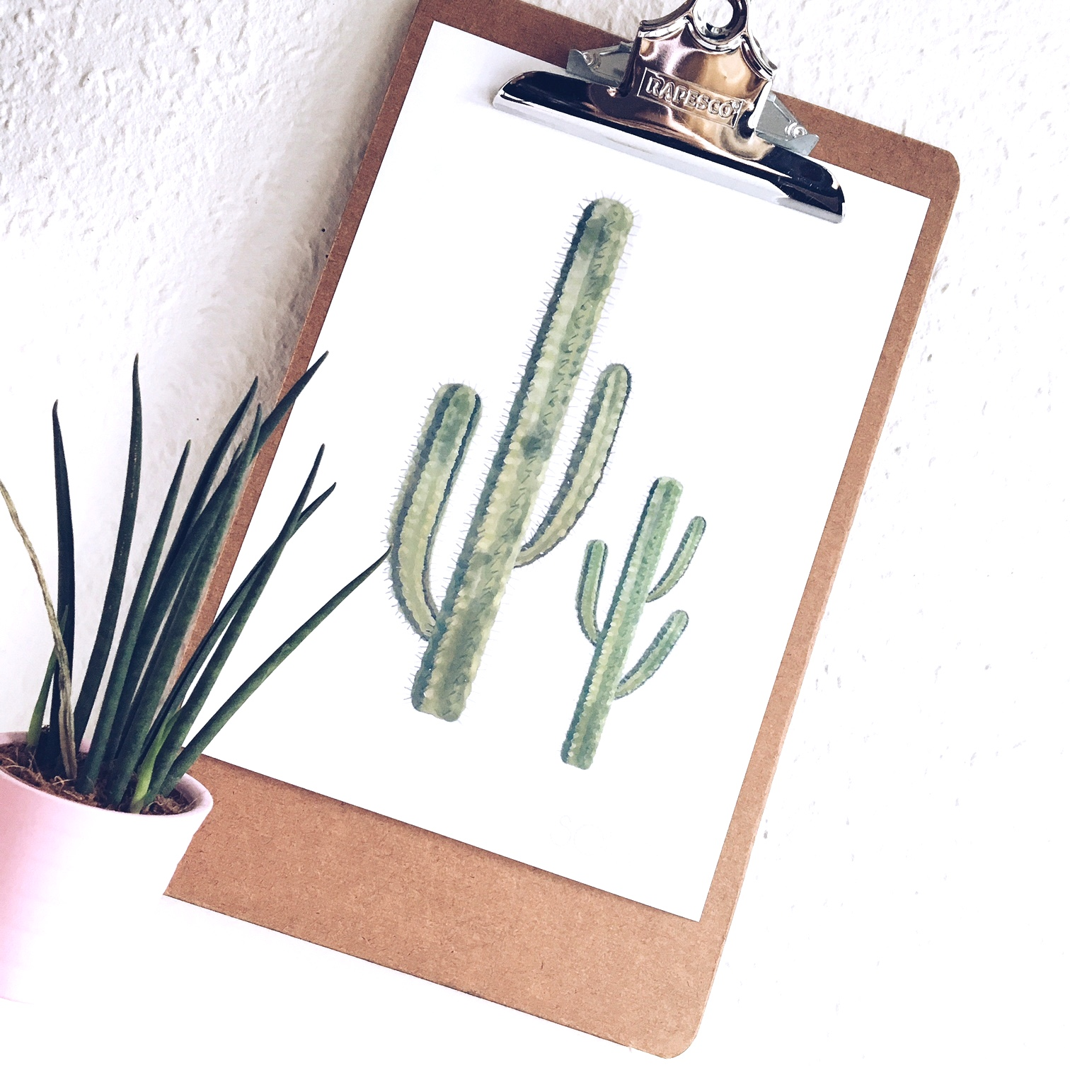 cactus-decorations