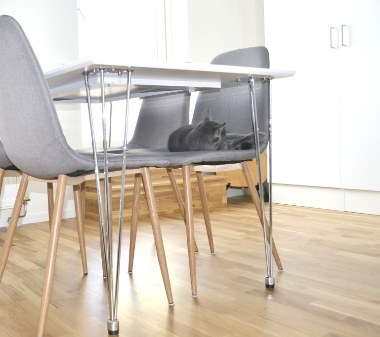 table chaises inspiration salle a manger