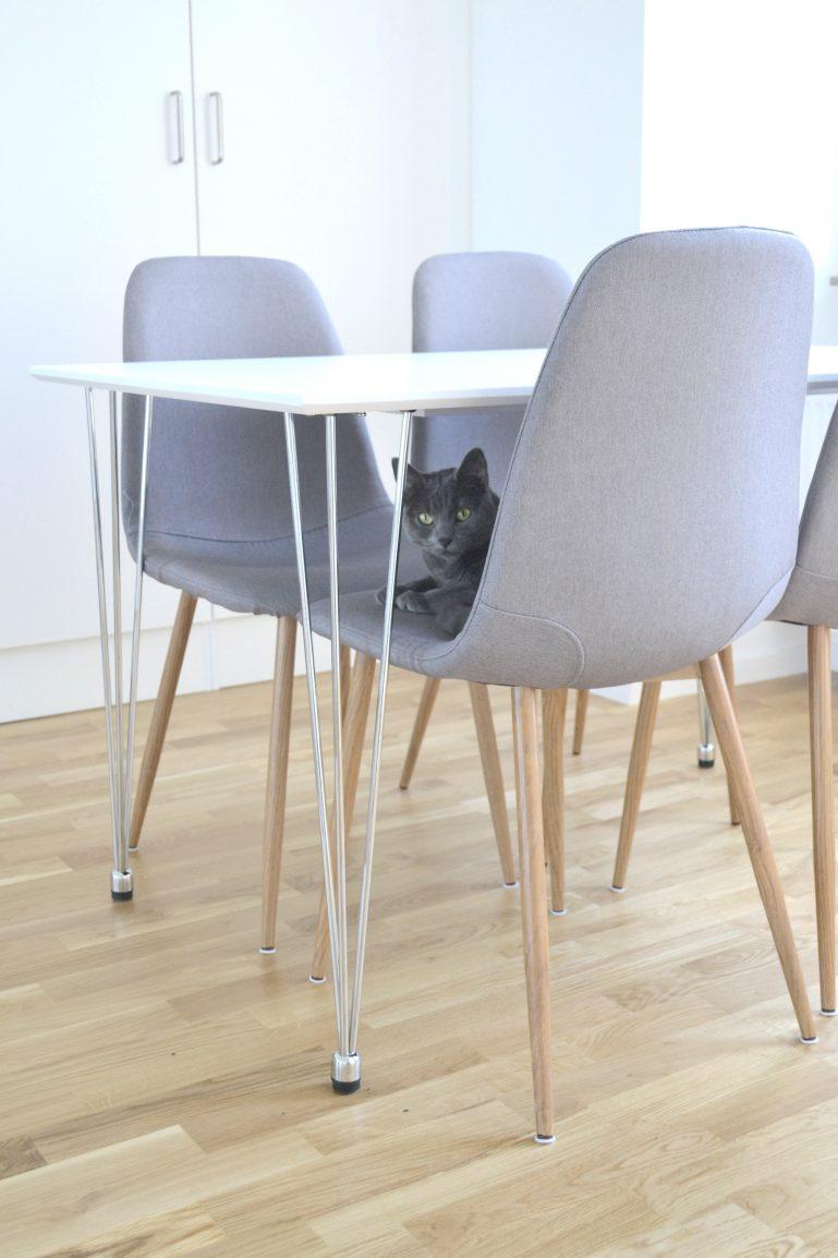 chaises scandinaves grises