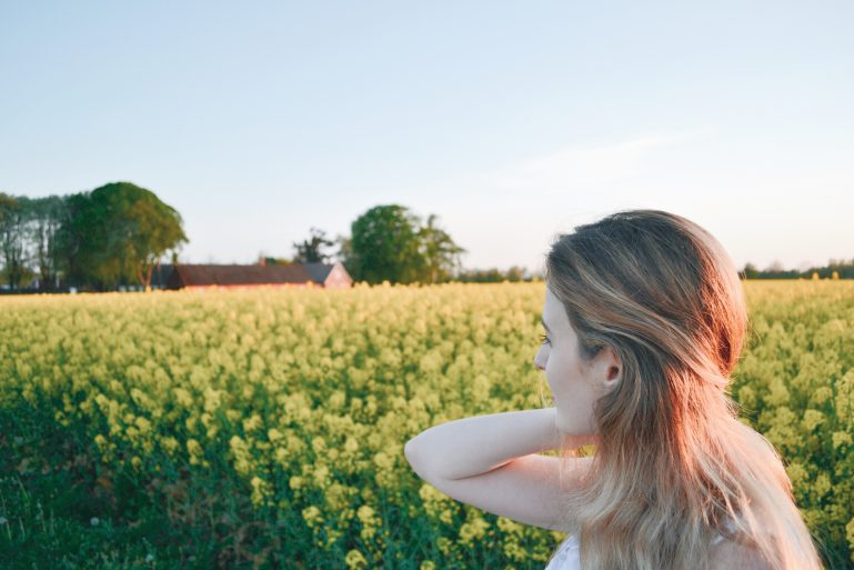 champs-de-colza-rapeseed-fields-17