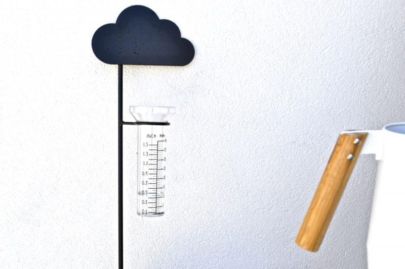 mesurer pluie