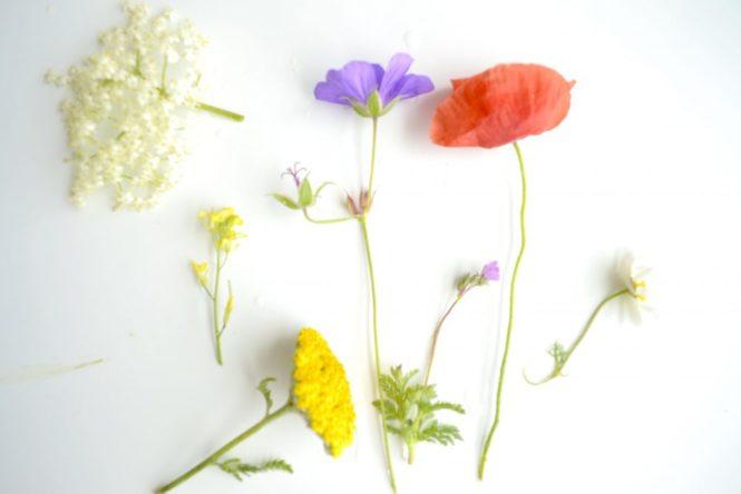 7 blommor midsummer