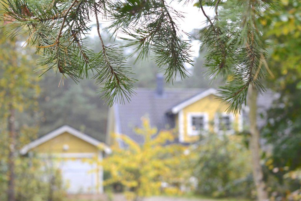 Le lagom vu par une expat' en Suède