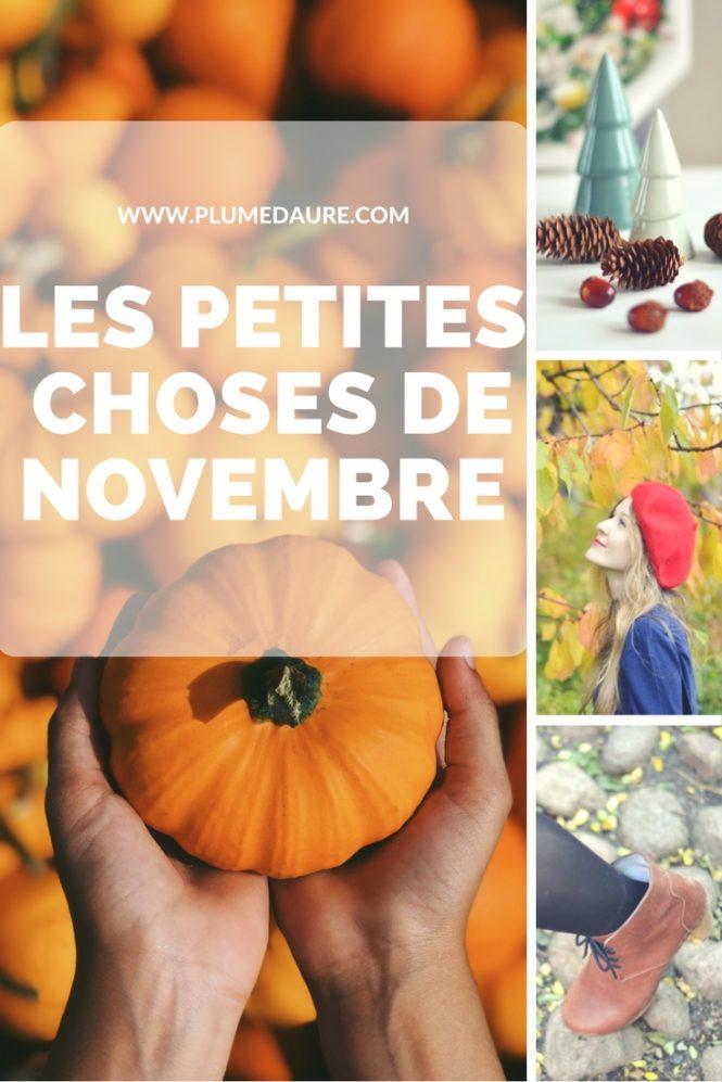 Les petites choses du mois de novembre : petits bonheurs, jolies découvertes ... par ici !