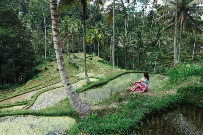 5 reasons everyone needs to visit Bali