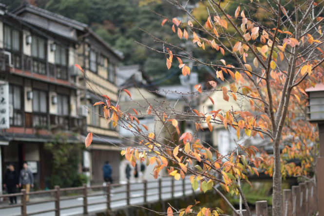 Kinosaki Onsen: a magical place to experience thermal baths in Japan